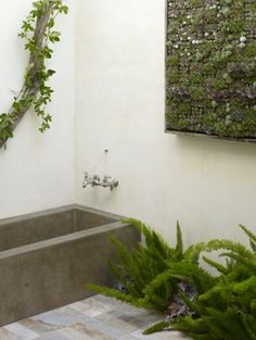 This bathroom is all about texture. A vertical wall of succulents combine with ferns and a twisted vine to contrast against the concrete bathtub. Photo by Jen Siska for Flora Grubb Gardens via Inside Out. Concrete Bathtub, Outdoor Bathtub, Outdoor Bathrooms, Dream Bathrooms, Stone Bathtub, Poured Concrete, Outdoor Showers, Vertical Succulent Gardens, Vertical Garden Diy