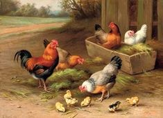 Farmyard chickens - Sold 7 June 2007 London, King Street for Chicken Painting, Chicken Art, Bird Artwork, Vintage Artwork, Farm Animals, Animals And Pets, Wpa Posters, Farm Images, Rooster Art