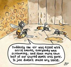 For all people that say that's no problem in eat honey #govegan