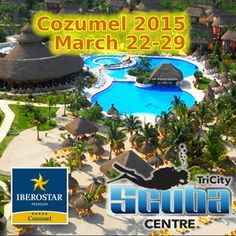 Dive in Cozumel with us!! Get out of the cold and DIVE, it's a great deal - only $1450 inclusive. Call 519.581.1044!