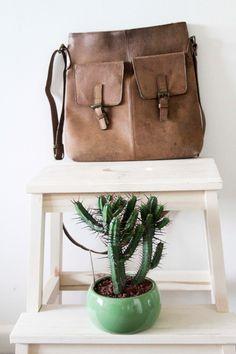 You say Leather Bag - I say Cactus