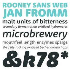 Rooney Sans Web type family by Jan Fromm #fonts #typography