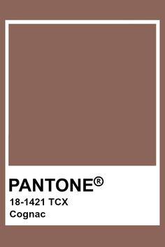 Colour Pallette, Colour Schemes, Color Patterns, Pantone Swatches, Color Swatches, Pantone Colour Palettes, Pantone Color, Paleta Pantone, Brown Pantone