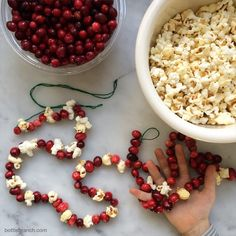 cranberry and popcorn garlands bottle branch blog Family Christmas, Christmas Crafts, Popcorn Garland, Advent Wreath, Garlands, Crafts For Kids, Bottle, Fun, Blog