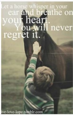 I will never regret...