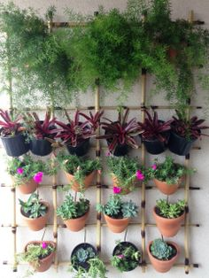 Jardim vertical em varanda de apartamento. Gradina Jardinagem e Paisagismo