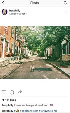 Five amazing blogs to help you plan your next big city trip // Philadelphia's Emily Tharp of Her Philly