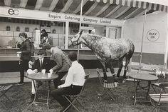Only in England - Windsor Horse Show, 1967 by Tony Ray-Jones  (© Tony Ray-Jones/National Media Museum)