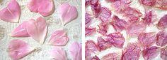 Fried rose petals