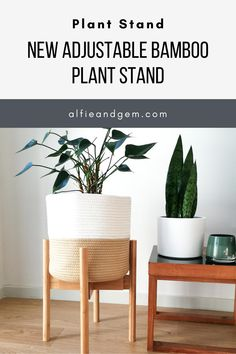 Plant Stand #plant #planting #bamboostand