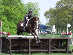 Vittoria Panizzon and River Valley Robert at Rockingham Castle Horse Trials - photo @ Lorraine Porter