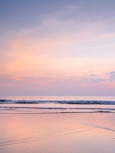 La Playa en Rose