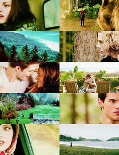 Edward & Bella's story