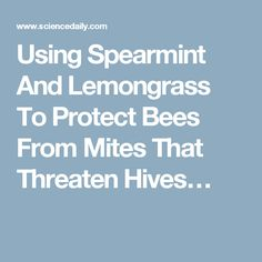 Using Spearmint And Lemongrass To Protect Bees From Mites That Threaten Hives…
