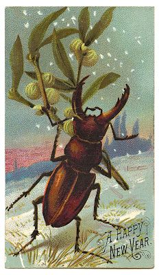 antique graphic new year beetle