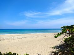 Encuentro Beach, Cabarete, North Coast of the Dominican Republic. Simply beautiful!