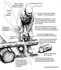 When the time comes to start cutting this winter's firewood supply, chainsaw safety should be your top priority.