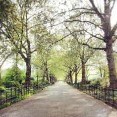 Battersea Park, London
