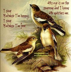 I sing because I'm happy....and I sing because I'm free......His eye is on the sparrow....and I know He watches over me!