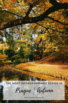 The most instagrammable places in Prague, Autumn, The Czech Republic