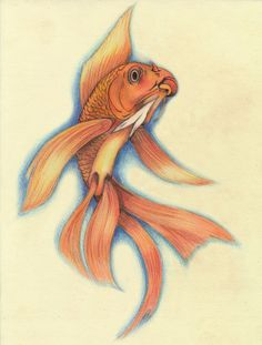 Goldfish draw tattoo plan