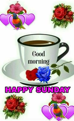 Happy sunday saved by sriram good morning e good morning quotes, happy Happy Sunday Images, Gud Morning Images, Good Morning Nature, Good Morning Happy Sunday, Good Morning For Him, Happy Sunday Quotes, Funny Good Morning Quotes, Happy Friday, Morning Greetings Quotes