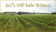 Dear customer, shop off all wines on sale!