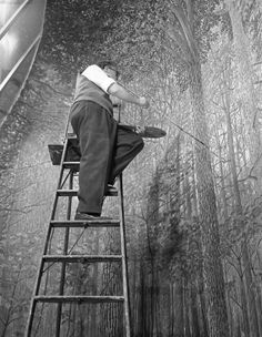 From the archives: An artist works on the background of a diorama in the Hall of North American Forests, 1956  © AMNH Library/Image #324466