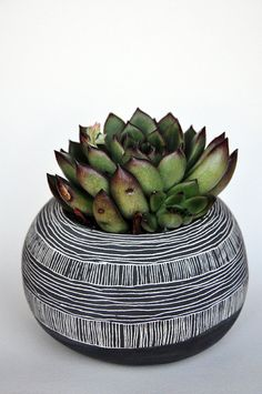 Made To Order // Orb Shaped Black + White Ceramic Planter with Layered Line Pattern // Succulent Planter // Cactus Planter // Table Planter Sgraffito, Ceramic Pottery, Ceramic Art, Ikebana, White Ceramic Planter, Urn Planters, Keramik Vase, Ceramics Projects, Cactus Y Suculentas