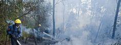 #apicultura Catalunya prohíbe hacer fuego en el bosque para evitar incendios http://aga.cat/index.php/ca/articles/darreres-noticies/459-catalunya-prohibeix-fer-foc-al-bosc-per-evitar-incendis #incendio #apicultura #catalunya #fuego