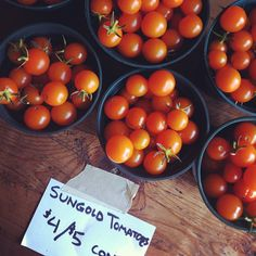 """@thequeenskickshaw's photo: """"Sungold tomatoes at today's Hellgate Farm stand @QueensKickshaw."""""""