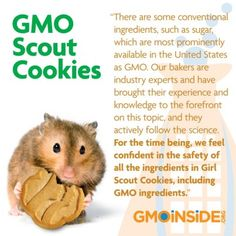 fight against gmo s on pinterest seeds cancer and farmers