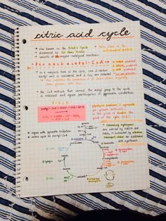 "asimhasan: ""princealonzo: ""grxeek: ""studyorcry: // finished my bio notes on the citric acid cycle! ☺️ "" LOVE "" I hate ppl who's notes are this neat "" omg can I borrow your notes studyorcry. College Notes, School Notes, Pretty Notes, Neet Notes, Study Organization, Ap Biology, Study Hard, Study Inspiration, Study Notes"