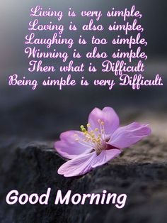 Living is very simple. Good Morning Wishes Friends, Happy Morning Quotes, Morning Quotes Images, Morning Greetings Quotes, Good Morning Messages, Good Night Quotes, Good Morning Images, Christian Good Morning Quotes, Morning Thoughts