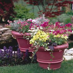 10 Season Garden Containers Ideas