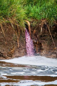 Industrial wastewater containing hazardous chemicals, discharged directly into the Citarum River