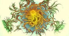 Colonies of Growing Bacteria Make Psychedelic Art. Bacterial Dragon (Paenibacillus dendritiformis), by Eshel Ben-Jacob.