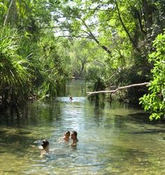 Berry Springs Darwin, Travel Goals, Nirvana, Berry, Paradise, Australia, Explore, World, Places