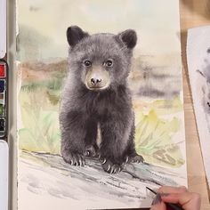 This video reveals five of my MUST KNOW tips and techniques for painting realistic animal fur with watercolor! See this baby black bear cub come to life as I share my secrets to creating beautiful animal portraits. Source by emilyjeanolson drawings Watercolor Painting Techniques, Watercolour Tutorials, Watercolor Paintings, Watercolor Trees, Watercolor Background, Watercolor Landscape, Abstract Watercolor, Drawing Techniques, Watercolor Pencils