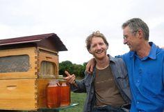 Insolite : La ruche robinet, une véritable révolution dans l'apiculture