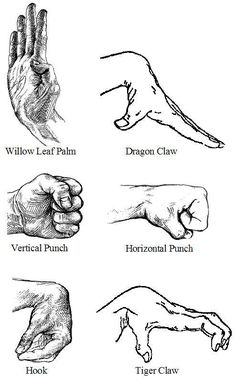 These are the different Tiger Kung Fu moves you must know about.  www.masteredmond.com