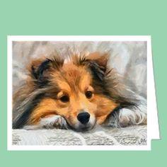 Shetland Sheep Dog - Sleeping Sheltie Blank Note Cards - Set of 6 with Envelopes by DoggyLips.Com LLC, http://www.amazon.com/dp/B008IK36WI/ref=cm_sw_r_pi_dp_lNm-pb1P37G3V