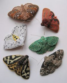 Agnes & Cora embroidered moths