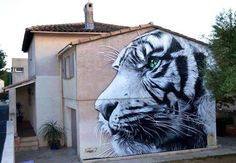 White tiger | Artwork : Seno.