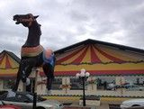 The Carousel in Evansville