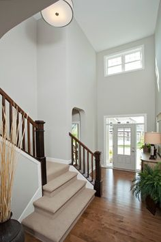 Repose Gray Sherwin Williams Design Ideas, Pictures, Remodel and Decor