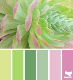 color palette - succulent spring