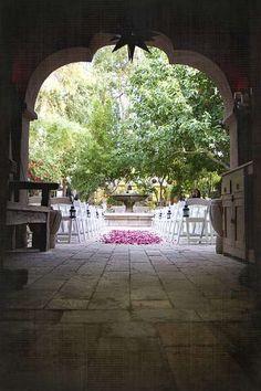 Boojum Tree Hidden Garden in Arizona #WeddingProtectorPlan #weddinginsurance