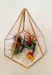 Bring Christmas into your home with this pretty scene creating a serene Christmas and holiday setting with our Gold Metal and Glass Pyramid Terrarium.  Terrarium comes complete with white gravel (to look like snow) a beautiful metal park bench, Christmas wreath and bell decorations.  Terrarium includes two beautiful Mexican Ionantha air plants.  This is a one-off Christmas themed terrarium.  We have more glass terrariums like this but not decorated in the same style.  After Christmas…