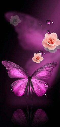 Apple Iphone Wallpaper Hd, Bear Wallpaper, Purple Wallpaper, Butterfly Wallpaper, Purple Backgrounds, Cellphone Wallpaper, Wallpaper Backgrounds, Beautiful Rose Flowers, Beautiful Butterflies